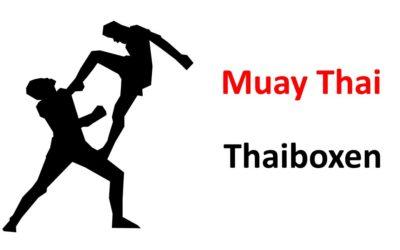 Geschichte der Kampfsportart Muay Thai