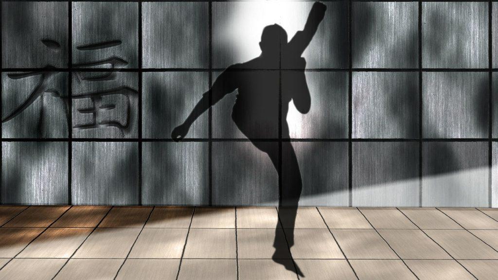 Tai Chi Chuan: Die Entstehung des Schattenboxen